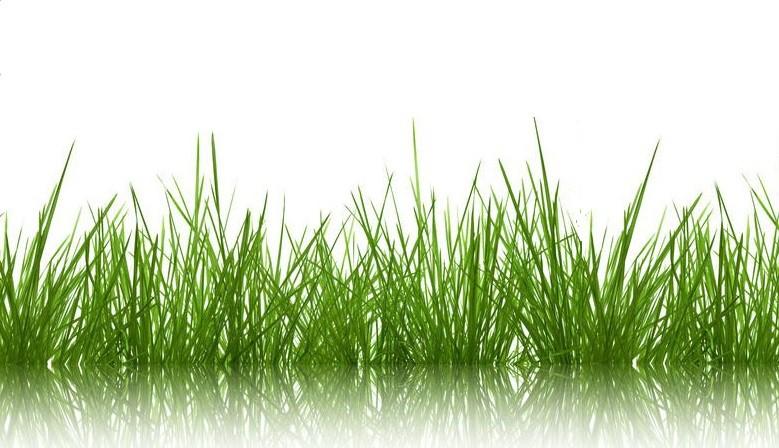Agriservices - Trattori e macchine agricole